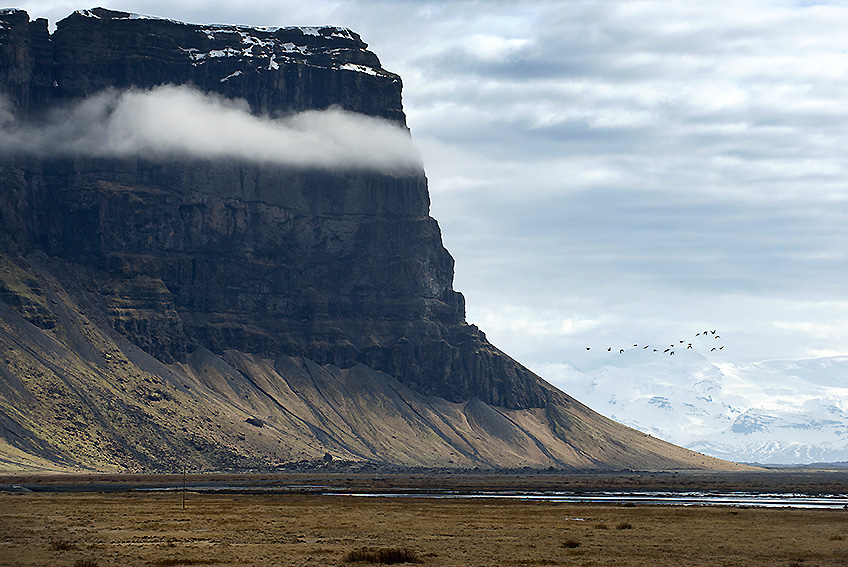 Three-Day Photo Safari to South Iceland?w=480&h=340&mode=crop&scale=both